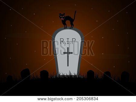 Halloween Gravestone Graveyard Cat Background