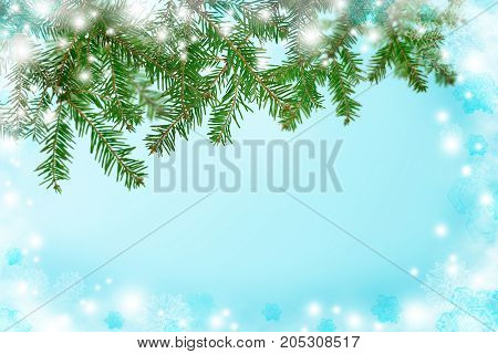 A blue background with branches of a Christmas tree and a frostbite. A cold winter morning. Rime and snowflakes on the window.