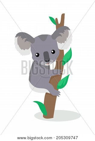 Koala cartoon character. Cute koala on eucalyptus branch flat vector isolated on white. Australian fauna. Koala icon. Animal illustration for zoo ad, nature concept, children book illustrating