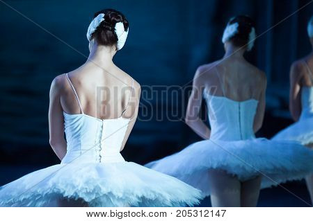 ballet, beauty, dramatic art concept. moveless and absolutly identical figures of female ballet dancers wearing outfit for performing swan lake standing back