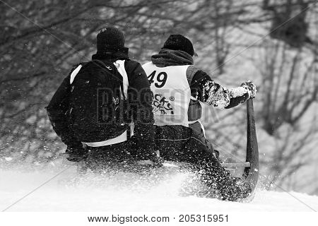 TURECKA, SLOVAKIA - FEBRUARY 21, 2015: Horned sledge race in Slovakia. Championship tournament in Turecka. High speed traditional downhill 2015