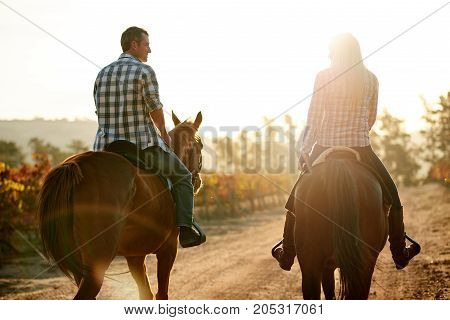 Smiling Couple Riding Horses Together Through An Autumn Vineyard