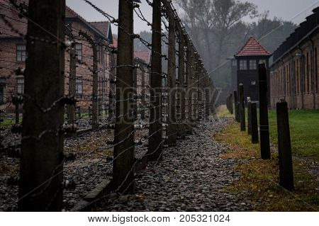 A View Of An Area Used For Executing Prisoners Of Auschwitz Concentration Camp. Extermination Camp,