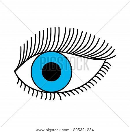 blue eye look eyelashes vision cartoon vector illustration