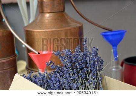 real lavender oil itself - close-up lavender and tool