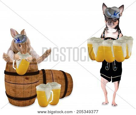 Octoberfest with cute dog chihuahua and cute bunny