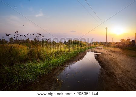 countryside Landscap; road in the farmland field after rain