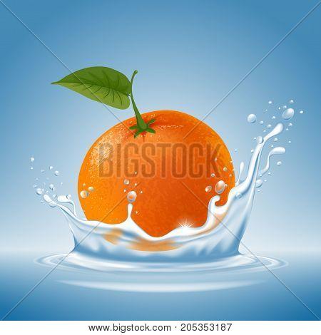 Mandarin In Water Splash