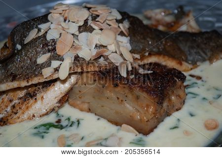 Trout fillet in creamy sauce with greens and almonds .