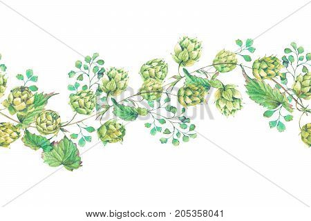 Watercolor natural seamless border of hops. Floral vintage watercolor illustration on white  background