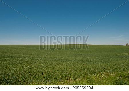 Antonihoejen hill near Praestoe in Denmark on a summer day