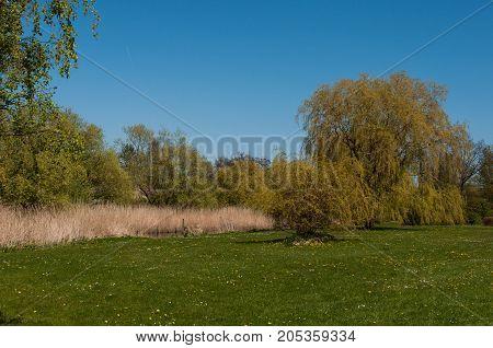 Park In The Town Of Praesto In Denmark