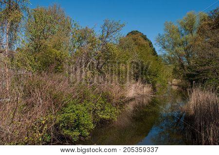 Tubaek river in Denmark on a sunny day