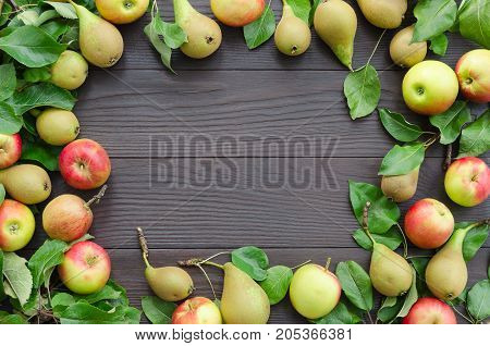 Frame of apples and pears on dark wooden background. Harvest concept. Top view flat lay overhead. Copy space background