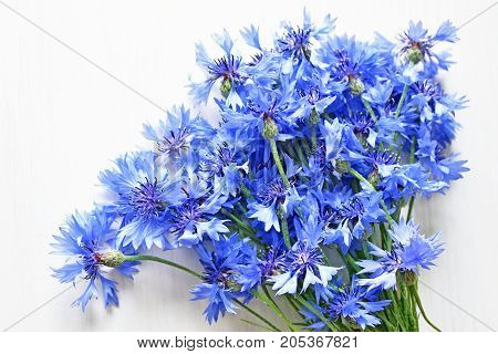 blue cornflowers bouquet over white wooden background