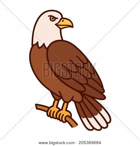 Bald eagle silling on branch. Wild bird of prey cartoon drawing isolated vector illustration.