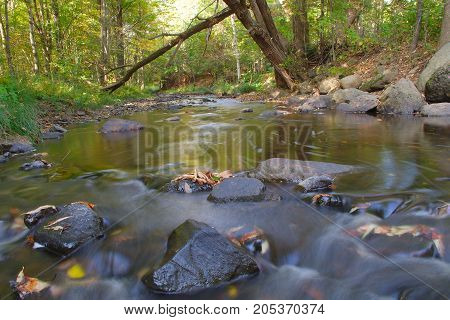 fresh water creek flowing river landscape environment
