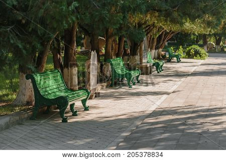 Benches in the park in summer. horizontal day shot