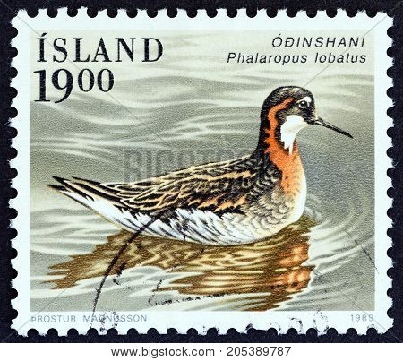ICELAND - CIRCA 1989: A stamp printed in Iceland from the