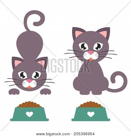 Vector image of a cartoon cat with a bowl set