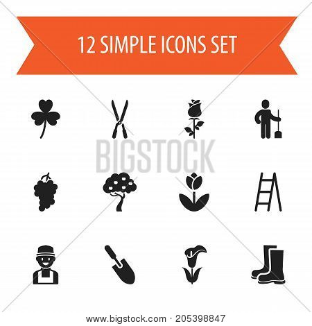 Set Of 12 Editable Agriculture Icons. Includes Symbols Such As Trefoil, Cluster, Ranunculus And More