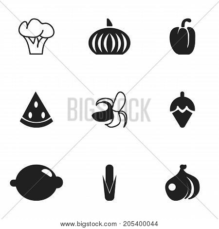 Set Of 9 Editable Dessert Icons. Includes Symbols Such As Onion, Maize, Muskmelon And More