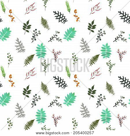 Tropical elements: Agonis, Eucalyptus, Annona, Balata, Zamiokulkas, Cissus. seamless pattern. Vector Illustration. EPS10