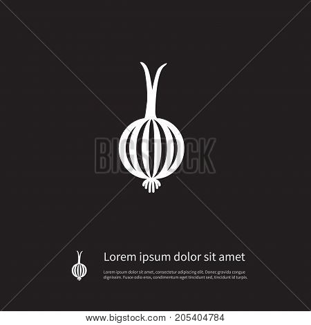 Onion   Vector Element Can Be Used For Leek, Onion, Shallot Design Concept.  Isolated Leek Icon.