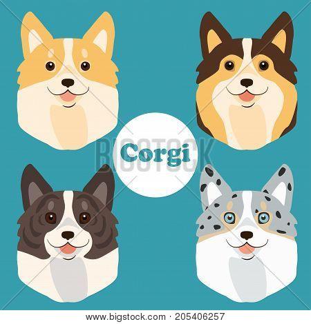 Cartoon Welsh Corgi faces set. Vector illustration. Corgi Cardigan and Pembroke color variations.