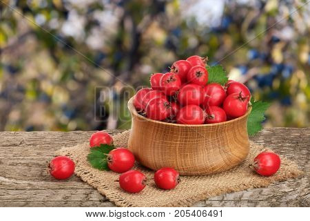 Hawthorn berry with leaf in a bowl on wooden table with a blurry garden background.