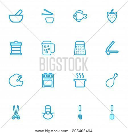 Set Of 16 Editable Cook Outline Icons. Includes Symbols Such As Bib, Berry, Fried Leg And More