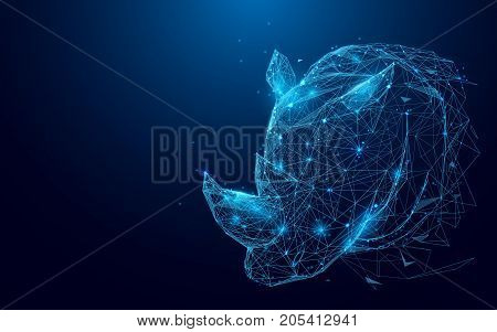 Rihno from lines and triangles, point connecting network on blue background. Illustration vector