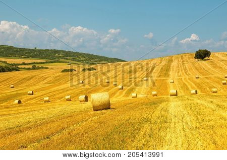 Levels after the harvest, with bales of straw.