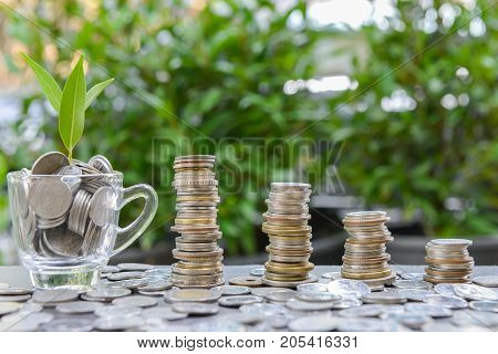 Growing coins stacks and coins in the glass with growing plant for saving money concept