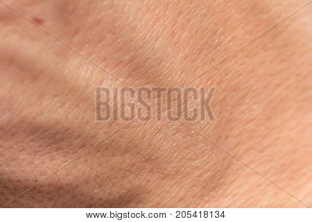 human skin as background . Photo of an abstract texture