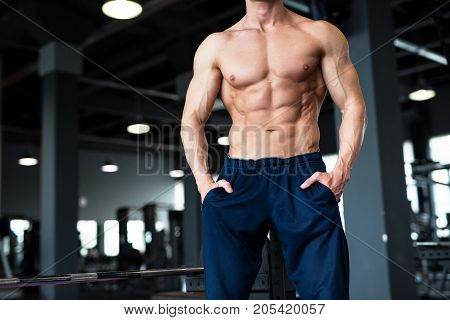 Fitness concept. Muscular and sexy torso of young man having perfect six pack abs, bicep and chest. Bodybuilder with athletic body