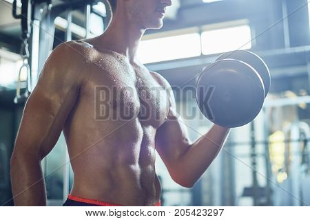 Profile view of sweaty muscular man building biceps with dumbbells while having intensive training at spacious gym, blurred background