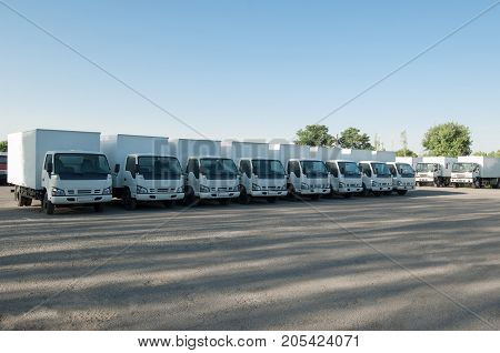 cargo vehicles stand in a row on a parking. freight transportation. truck park