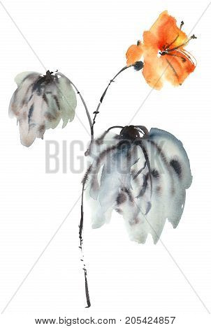 Watercolor and ink botanic illustration of flower. Sumi-e u-sin oriental painting. Decorative background for greeting card or invitation.
