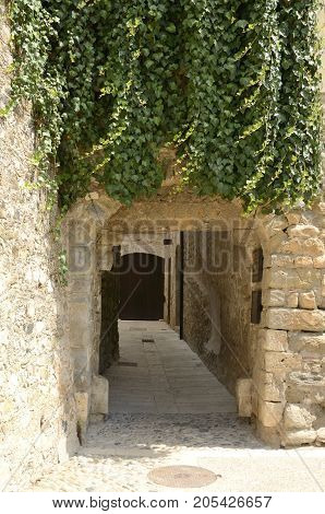 Ivy on wall at an arch gate in an alley of Besalu a town in the comarca of Garrotxa in Girona Catalonia Spain.