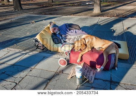 Paris France - November 4 2012: The unidentified homeless is begging with dogs on Champs Elysees avenue
