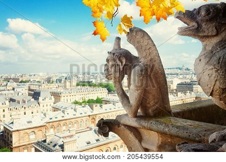 Gargoyle of Paris on Notre Dame Cathedral church and Paris cityscape from above at fall, France