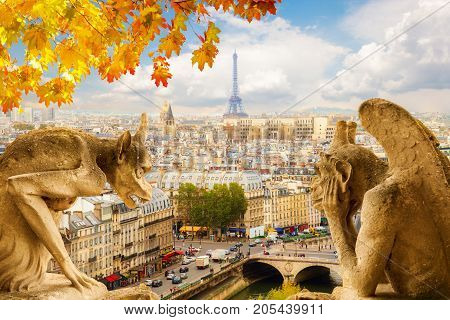 Gargoyle on Notre Dame Cathedral and city of Paris at fall, France