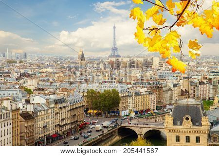 skyline of Paris city with blue sky and fall tree branch, France