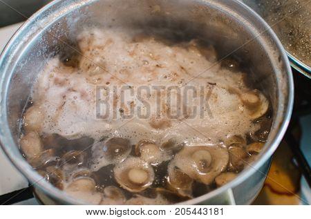Close Up On  Bay Bolete ( Imleria Badia ) On Pot, Cooking