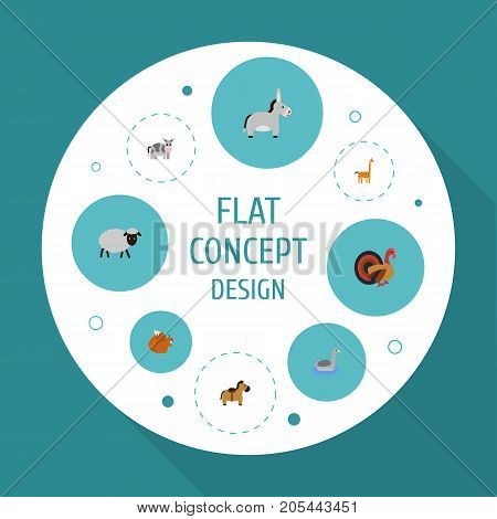 Flat Icons Jackass, Gobbler, Chipmunk And Other Vector Elements