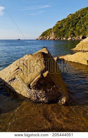 Stone In Thailand Kho Tao Bay Abstract Of