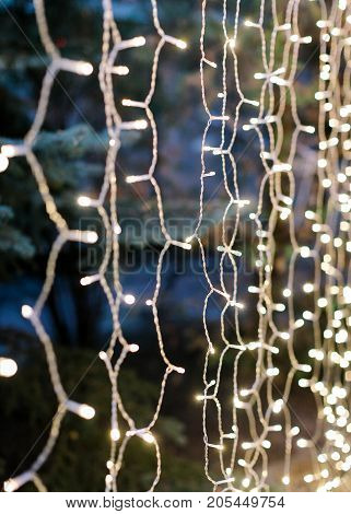 party, decoration, background concept. illumination created for celebration with help of lots of little twinkle lights that are shining in the nightfall