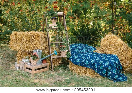 rural lifestyle, fall, outdoor concept. surrounded by squares of hay there are gardening stuff like excelent big watering can, wooden ladder, lovely flowers in pots and candles in small glass jars