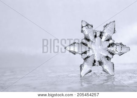 Close up photograph of a cool winter snowflake sitting on an icy watery surface. Copyspace is provided to the left side of the photograph.